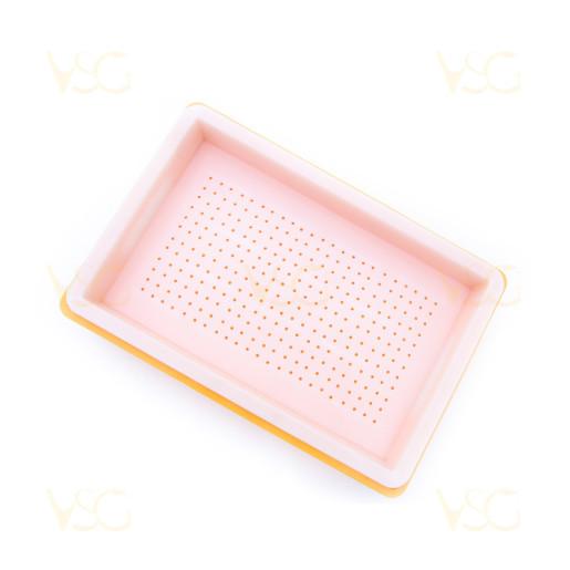 Tava descapacit 10 cm plastic cu filtru plastic si suport rame 3