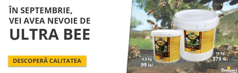 Ultra Bee